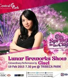 Lunar Fireworks Show